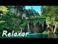 Acalmar A Mente Música Relaxante Piano E Natureza Relaxar mp3
