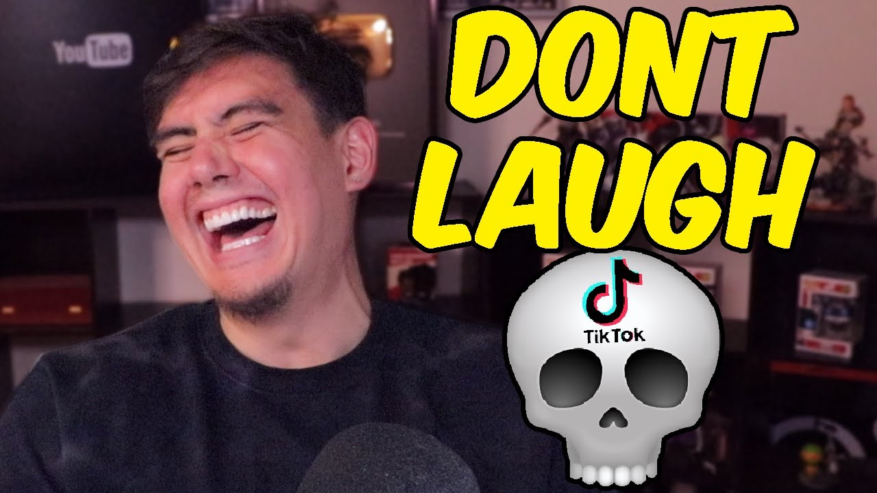 TIK TOKS THAT FINALLY GOT ME TO CRY LAUGHING | Try Not To Laugh (Fan Submissions)