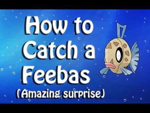 How to get Feebas - Pokemon Sun and Moon