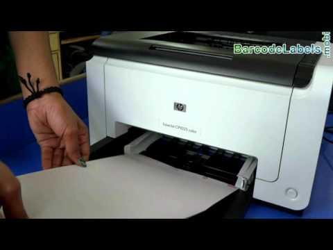 Steps to Adjust Margin in Print Settings