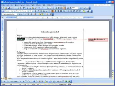 Inserting Comments into a Word 2003 Document