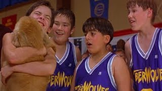 Kids TV Shows | Sports News - Model Team Mate | Air Bud TV | Funny Kids Videos | Sports for Kids