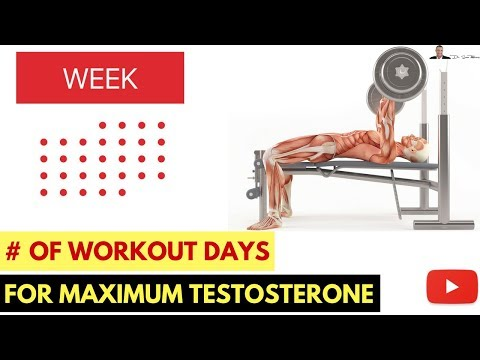 💪How Many Days A Week Should I Workout For Maximum Testosterone Levels?