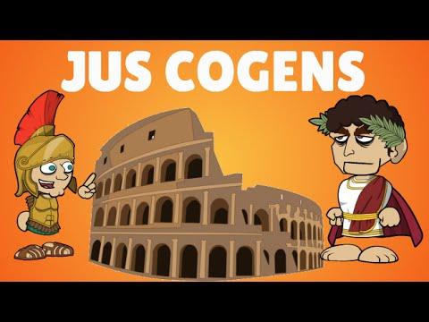 Jus Cogens , Peremptory norms explained | Lex Animata | Hesham Elrafei