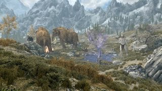 Skyrim PS4 Mods: Druid Conjuration | Daikhlo