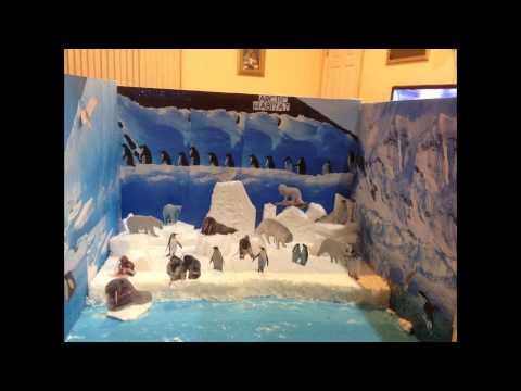 Habitat Arctic school project