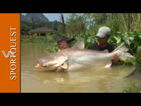 World Record Gillham's Resort Thailand, the home of more IGFA records than any other.