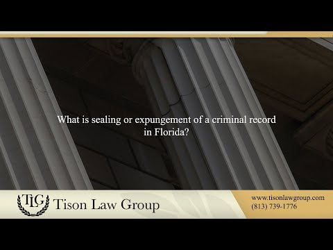 What is sealing or expungement of a criminal record in Florida?