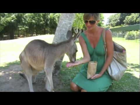 S/V Honeymoon visits Oz: Bundy to Brissy (Ep25)