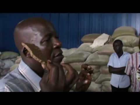 FISH FEED FORMULATION - GOING COMMERCIAL 2
