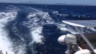 Zipper on the move Ocean Crossing outremer 45 Mondelo to