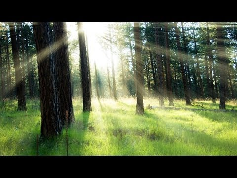 Photoshop Sunray Sunbeam Effects Tutorial