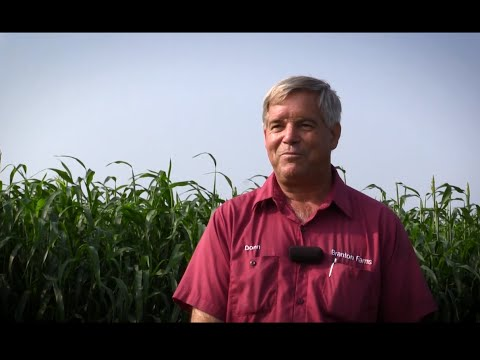 Innovative Assessment Helps Farmers in the Northeast Improve Soil Health