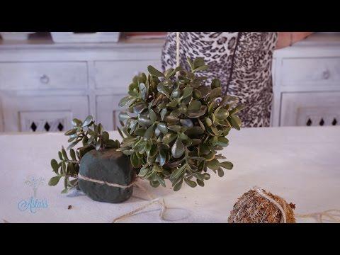 Hanging Money-tree Sphere Floristry Tutorial