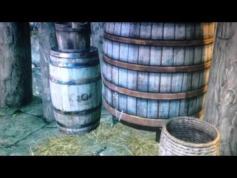 Skyrim: The Pursuit Quest FIX