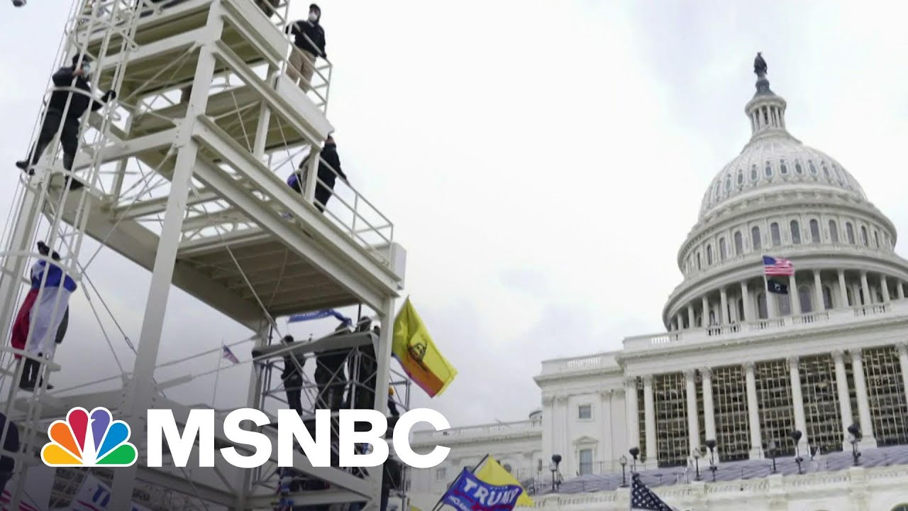 What Does The GOP Stand For Anymore? Writer On Why The Party 'Can't Be Saved' | Morning Joe | MSNBC
