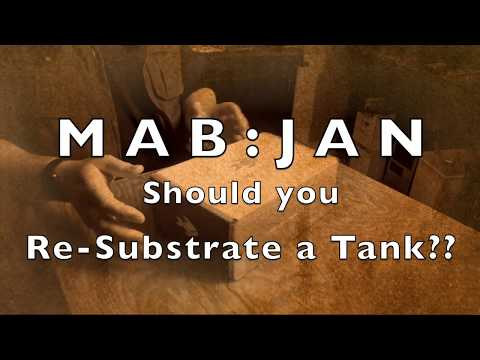 MAB:Jan Should You Re-Substrate a Running Tank?