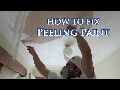 Fix flaking paint on plasterboard ceiling
