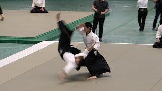 Kenji Hirasawa - 56th All Japan Aikido Demonstration 2018