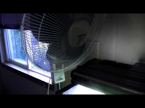 How To Keep Your Fish Tank Cool In Hot Weather