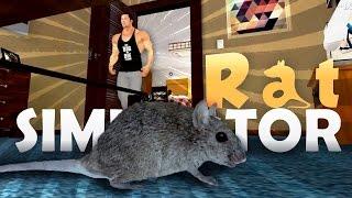 Rat Simulator - NEED MORE MUSCLES!! (Rat Simulator Game / Rat Simulator Gameplay) #2