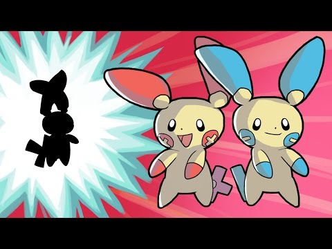 Plusle And Minun Evolve?!