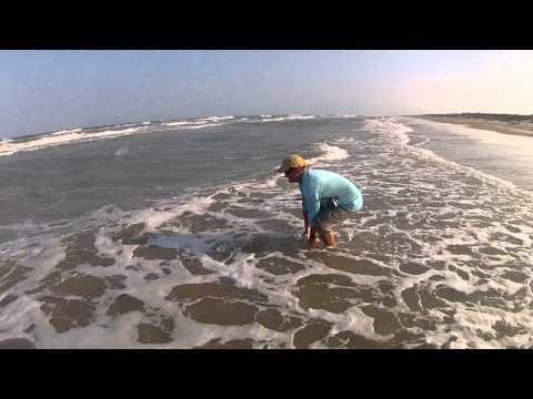 Octoberhoot: Fly Fishing Padre National Seashore (PINS).