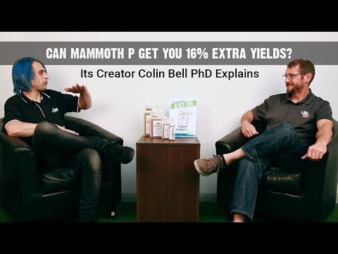 Can Mammoth P Get You 16% Bigger Yields? Colin from Growcentia Explains The Science.
