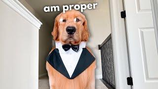 How to be a Proper Gentleman