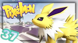 How to Train your Swampert!   Pixelmon: Pokecentral