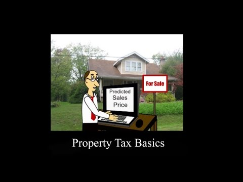 Property Tax Basics
