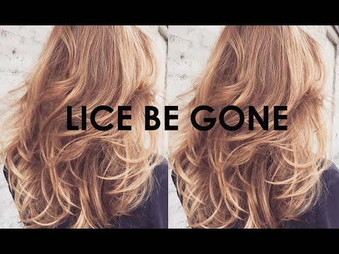 Lice Removal with Conditioner & Comb #2 Shorter Version