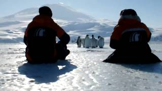 Just Another Day At The Office In Antarctica...