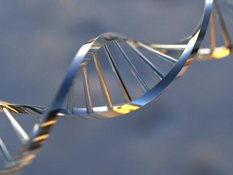 Global Preimplantation Genetic Diagnosis Market 2014-2018