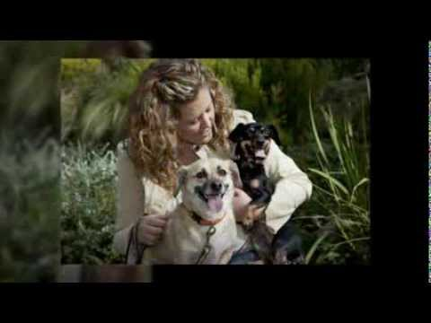 Pet Sitter in Beverly Hills - Call (310) 883-5047 - Beverly Hills Pet Sitting