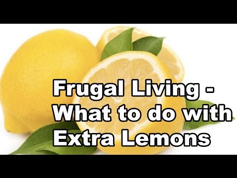 Frugal Living - What to do with Extra Lemons
