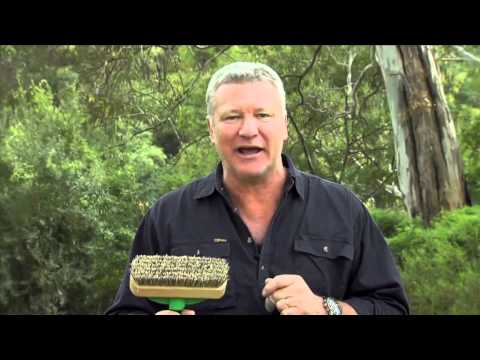 Mitre 10 How To Seal A Timber Deck Presented By Scott Cam