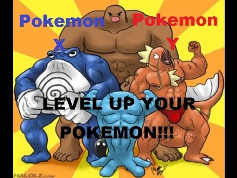Pokemon X and Y- How to level up your Pokemon