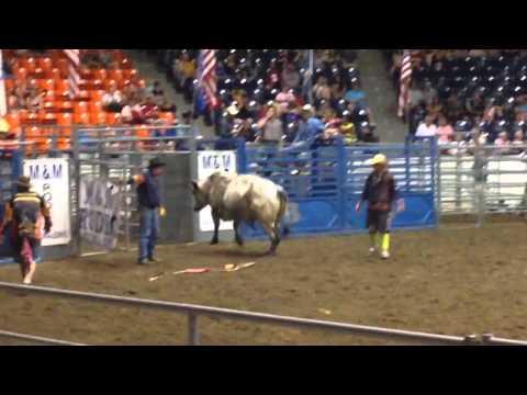 Bull Rider at Ohio State Fair 2014