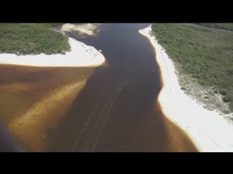 Red tide found in parts of Sanibel, Captiva islands