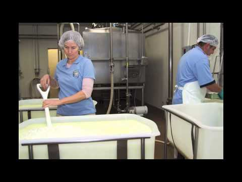 How To Make Goat Cheese: Redwood Hill Farm Camellia