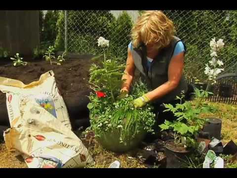 Planting in Outdoor Gardening Potters