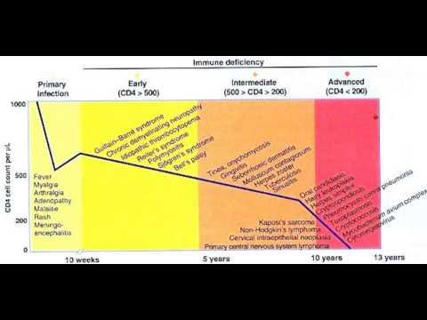 Understanding CD4 counts