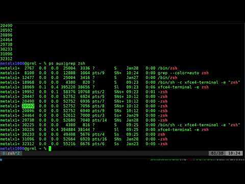 22 Get the Process ID of a Running Program Linux Shell Tutorial