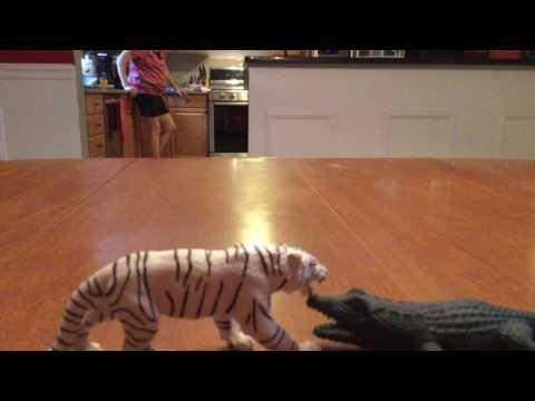 pixelpandas.org/ Tiger v.s. Aligator