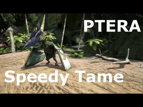 Ark: Pteranodon Taming - Speedy Tame