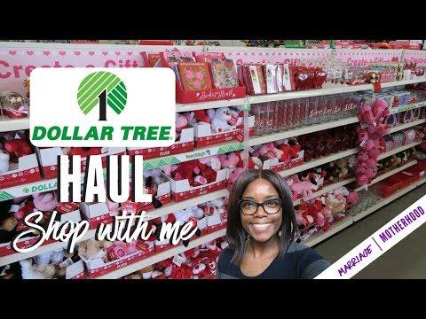 Dollar Tree Shop with me 2018 | Dollar Tree Haul