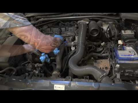 Peugeot 406 Starter Replacement