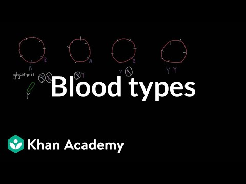 Blood types | Human anatomy and physiology | Health & Medicine | Khan Academy