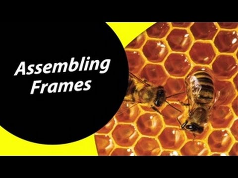 How To Make A Beehive Frame For Dummies
